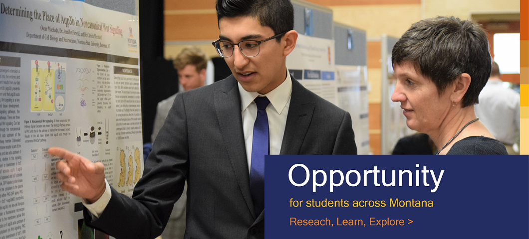 Student Research Opportunities Banner