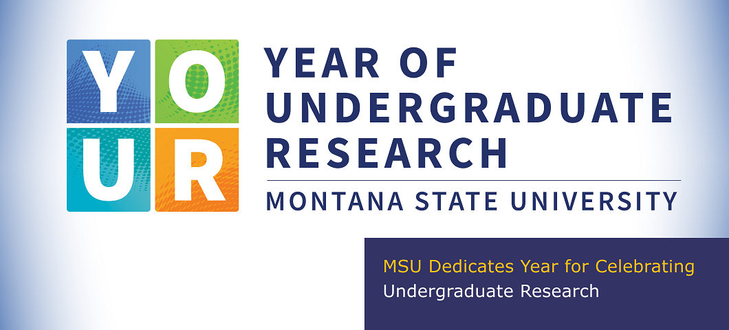 MSU dedicates year for celebrating undergraduate research