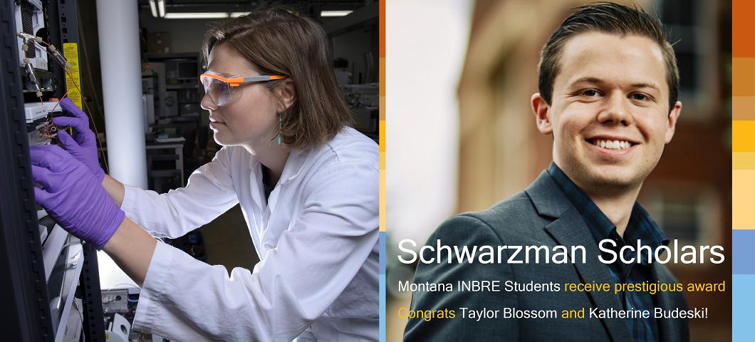 Two Montana INBRE Students awarded Schwarzman Scholarships