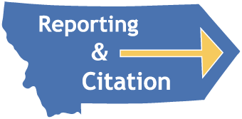 Reporting & Citation